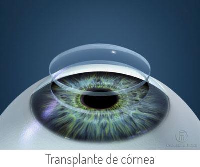 Descrição: http://rodrigosalustiano.portalquest.com.br/images/especialidades/transplante.jpg
