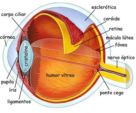Descrição: http://www.radashweb.com/leiriadeandrade/imgdiversos/olho-vermelho.jpg